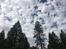 ουρανοί θυελλώδεις Στοκ Εικόνες