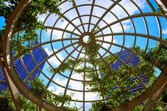 Ουρανοξύστες της Βοστώνης από το νορμανδικό πάρκο Leventhal Στοκ Εικόνες