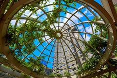 Ουρανοξύστες της Βοστώνης από το νορμανδικό πάρκο Leventhal Στοκ εικόνα με δικαίωμα ελεύθερης χρήσης