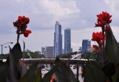 Ουρανοξύστες του Σικάγου Στοκ φωτογραφία με δικαίωμα ελεύθερης χρήσης