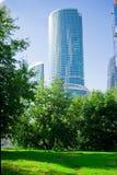 ουρανοξύστης φύσης στοκ εικόνες με δικαίωμα ελεύθερης χρήσης