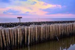 Ουρανός βραδιού και σειρές των ραβδιών μπαμπού στη θάλασσα κοντά στη λάρνακα Matchanu, Phanthai Norasing, περιοχή Mueang Samut Sa Στοκ Φωτογραφία