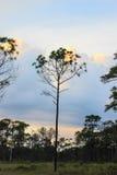 Ουρανός βραδιού στο γιο Thung μη Στοκ Εικόνες