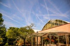 ουρανός γραμμών Στοκ φωτογραφία με δικαίωμα ελεύθερης χρήσης