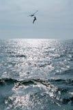ουρανός δύο στοκ εικόνα με δικαίωμα ελεύθερης χρήσης