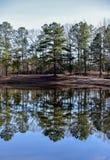 Ουρανός και δέντρα που απεικονίζονται θερινοί στο νερό λιμνών στοκ εικόνα με δικαίωμα ελεύθερης χρήσης