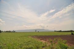 Ουρανός και λιβάδι ατελείωτοι στοκ φωτογραφία με δικαίωμα ελεύθερης χρήσης