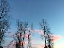 Ουρανός καραμελών βαμβακιού στοκ εικόνες με δικαίωμα ελεύθερης χρήσης