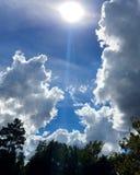 Ουρανός με τα σύννεφα και τα δέντρα Στοκ φωτογραφία με δικαίωμα ελεύθερης χρήσης