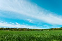 ουρανός πεδίων Στοκ Φωτογραφίες
