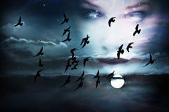 ουρανός προσώπου Στοκ εικόνες με δικαίωμα ελεύθερης χρήσης