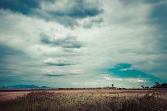 Ουρανός σύννεφων πέρα από το λιβάδι Στοκ Φωτογραφίες