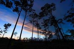 Ουρανός λυκόφατος στο γιο Thung μη Στοκ Εικόνες