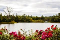 ουρανός φύσης λιμνών σύννεφων Στοκ φωτογραφία με δικαίωμα ελεύθερης χρήσης