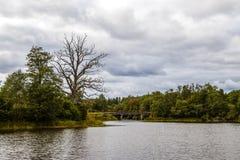 ουρανός φύσης λιμνών σύννεφων Στοκ φωτογραφίες με δικαίωμα ελεύθερης χρήσης