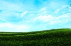 ουρανός χλόης ανασκόπηση&sig Στοκ Εικόνα