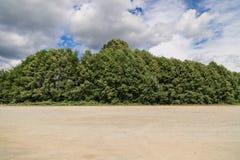 Ουρανός, χλωρίδα και αμμοχάλικο Στοκ Εικόνες