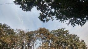 ουρανός στοκ φωτογραφίες