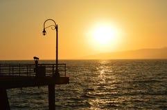 Ουρανός gazer Στοκ εικόνες με δικαίωμα ελεύθερης χρήσης