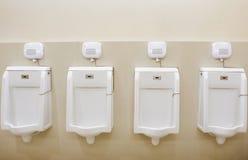 Ουροδοχείο στην τουαλέτα στοκ εικόνες