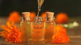 Ουσία των λουλουδιών calendula στον πίνακα στο όμορφο μπουκάλι γυαλιού απόθεμα βίντεο