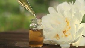 Ουσία των λουλουδιών Peony στον πίνακα στο όμορφο μπουκάλι γυαλιού απόθεμα βίντεο