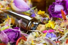 Ουσιαστικά πετρέλαια, aromatherapy, ξηρά λουλούδια στοκ φωτογραφίες με δικαίωμα ελεύθερης χρήσης