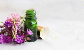 Ουσιαστικό πετρέλαιο σε ένα μπουκάλι με τα λουλούδια και dropper γυαλιού, aromat Στοκ Εικόνες