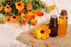 Ουσιαστικό πετρέλαιο Aromatherapy με τα φρέσκα marigold λουλούδια στο άσπρο ξύλινο υπόβαθρο Πετρέλαιο Calendula Στοκ φωτογραφία με δικαίωμα ελεύθερης χρήσης