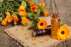 Ουσιαστικό πετρέλαιο Aromatherapy με τα φρέσκα marigold λουλούδια στο παλαιό ξύλινο υπόβαθρο Πετρέλαιο Calendula Στοκ εικόνα με δικαίωμα ελεύθερης χρήσης
