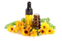 Ουσιαστικό πετρέλαιο Aromatherapy με marigold το άσπρο υπόβαθρο λουλουδιών Στοκ Εικόνες