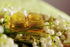 Ουσιαστικό πετρέλαιο/aromatherapy Στοκ φωτογραφία με δικαίωμα ελεύθερης χρήσης