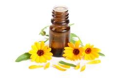 Ουσιαστικό πετρέλαιο Aromatherapy με marigold το άσπρο υπόβαθρο λουλουδιών Στοκ φωτογραφία με δικαίωμα ελεύθερης χρήσης