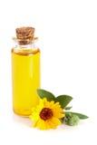 Ουσιαστικό πετρέλαιο Aromatherapy με marigold το άσπρο υπόβαθρο λουλουδιών Στοκ εικόνες με δικαίωμα ελεύθερης χρήσης