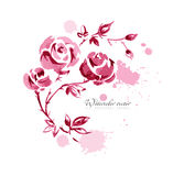λουλούδια ι συντακτών watercolor εικόνων ζωγραφικής Στοκ Εικόνες