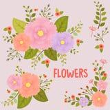 λουλούδια καρτών ανασκόπησης που χαιρετούν τον καθολικό εκλεκτής ποιότητας Ιστό προτύπων σελίδων Στοκ Εικόνες