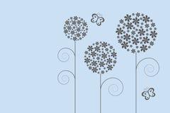 λουλούδια μαλακά Στοκ εικόνα με δικαίωμα ελεύθερης χρήσης