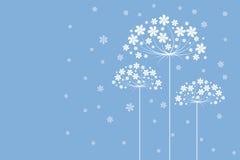 λουλούδια μαλακά Στοκ φωτογραφία με δικαίωμα ελεύθερης χρήσης