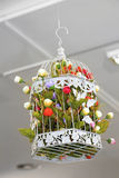 λουλούδια στο κλουβί Στοκ Φωτογραφίες