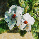 λουλούδια δύο λευκό Σχέδιο μίμησης ελεύθερη απεικόνιση δικαιώματος