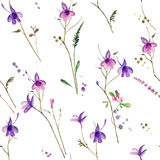 λουλούδι άνευ ραφής Στοκ Εικόνα