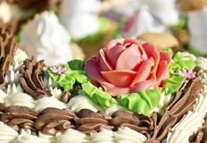 λουλούδι κρέμας Στοκ φωτογραφία με δικαίωμα ελεύθερης χρήσης
