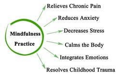 Οφέλη της πρακτικής Mindfulness διανυσματική απεικόνιση