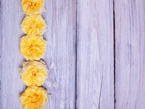 Οφθαλμοί των κίτρινων τριαντάφυλλων Στοκ φωτογραφίες με δικαίωμα ελεύθερης χρήσης