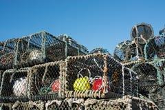 δοχεία αστακών του Μπράιτ&om Στοκ εικόνες με δικαίωμα ελεύθερης χρήσης