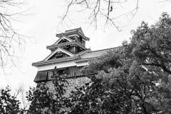 Οχυρό του κάστρου Στοκ Εικόνες