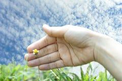 Ο άνθρωπος παραδίδει τη φύση Στοκ εικόνες με δικαίωμα ελεύθερης χρήσης