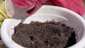 Ο άνθρωπος χύνει το χώμα στο άσπρο δοχείο για τα λουλούδια υπαίθρια, κινηματογράφηση σε πρώτο πλάνο των χεριών με τα προστατευτικ φιλμ μικρού μήκους