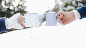 Ο άνδρας και η γυναίκα παραδίδουν τα πλέκοντας γάντια με τα φλυτζάνια του καυτού τσαγιού στο χειμερινό δασικό ξέφωτο φιλμ μικρού μήκους