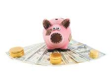 δολάρια τραπεζών piggy Στοκ Φωτογραφία